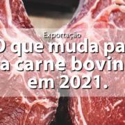 Call Export discorre sobre a Exportação de Carne Bovina e as Tendências em 2021.