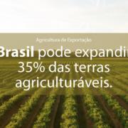 Call Export discorre sobre o tema de Agricultura de Exportação. Foto por Dan Meyers no Unsplash.
